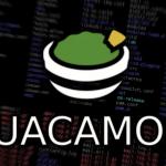 Vulnerabilidades en Apache Guacamole